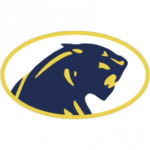dewitt-panthers-300x300